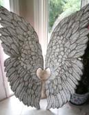 angels-wings